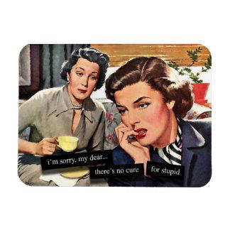 Ann es 50 femme au foyer humour magnets for Femme au foyer annees 50