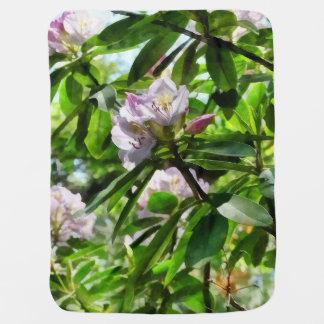 Les rhododendrons sont en fleur couvertures de bébé