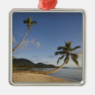 Les Seychelles, île de Mahe, paume horizontale, Ornement Carré Argenté