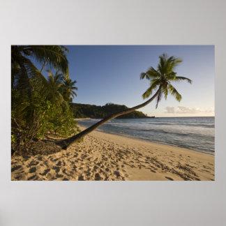 Les Seychelles, île de Mahe, plage d'Anse Takamaka Poster