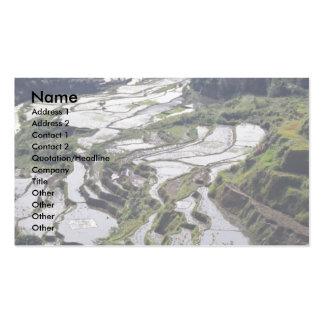 Les terrasses sculptent, Philippines Carte De Visite Standard
