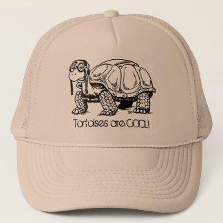 Les tortues sont FRAÎCHES ! Casquette