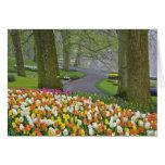 Les tulipes et la chaussée, Keukenhof fait du jard Carte De Vœux