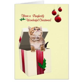 Les vacances chaudes de chaton précieux souhaitent cartes de vœux