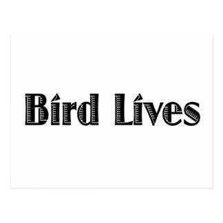 Les vies d'oiseau cartes postales