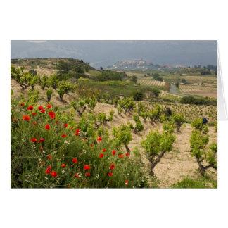 Les vignobles s'approchent de Laguardia, capitale Carte De Vœux