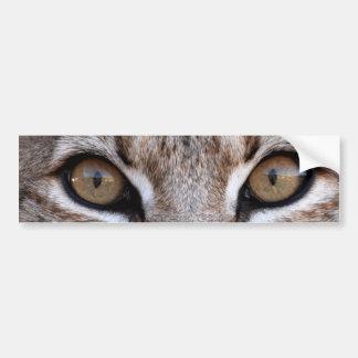 Les yeux d'un chat sauvage autocollant de voiture