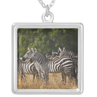 Les zèbres de Burchell (Equus Burchellii) comme vu Pendentif Carré