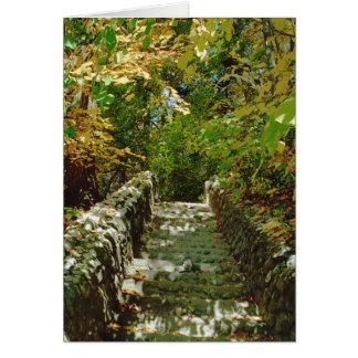 L'escalier vert carte de vœux