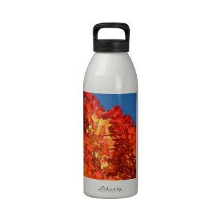 L'esprit d'esprit de santé de bouteilles d'eau ajo