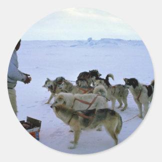L'Esquimau polaire alimente des chiens Adhésifs