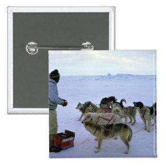 L'Esquimau polaire alimente des chiens Pin's