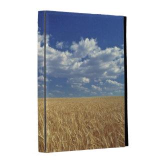 L'état de Washington des Etats-Unis, Colfax. Blé Coque Folio iPad