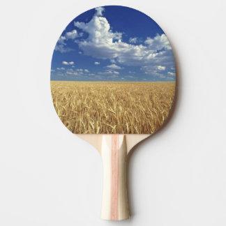 L'état de Washington des Etats-Unis, Colfax. Blé Raquette Tennis De Table