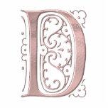 Lettre de fantaisie D 1 Photo En Relief
