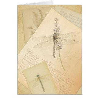 L'étude de la carte de voeux de libellules
