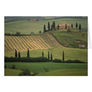 L'Europe, Italie, Toscane, d Orcia, le Toscan de Cartes