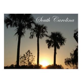 Lever de soleil de Palmetto de la Caroline du Sud Carte Postale