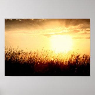 Lever de soleil de prairie posters