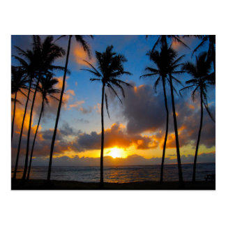 Lever de soleil hawaïen carte postale