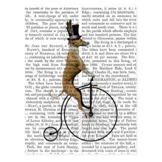 Lévrier sur le vélo noir de quart de penny de cartes postales