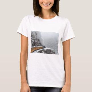 L'express polaire arrondit la courbure t-shirt