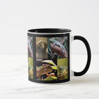 Lézards et caméléons de Gecko Tasses
