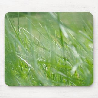 L'herbe souille le tapis de souris