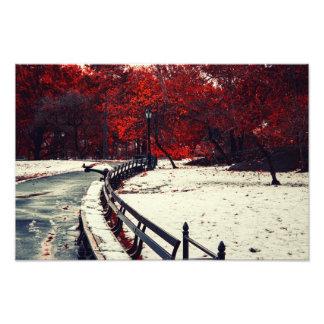 L'hiver rencontre l'automne dans le Central Park, Photo D'art