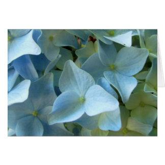 L'hortensia bleu fleurit la photo florale de fleur carte de vœux