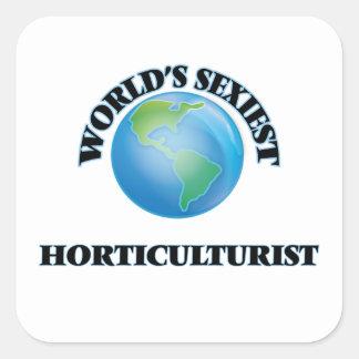 L'horticulteur le plus sexy du monde autocollant carré