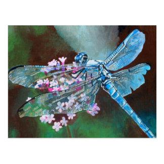 Libellule bleue carte postale