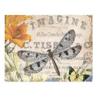 libellule française vintage moderne carte postale