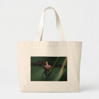 libellule sacs