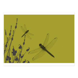 Libellules dans l'herbe carte postale
