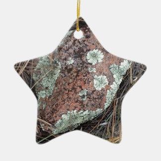 Lichen de roche de mousse ornement étoile en céramique