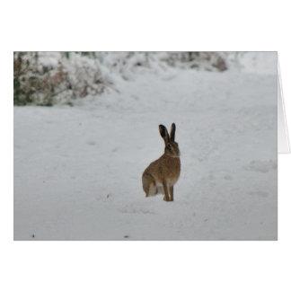 Lièvres de Brown dans la carte de Noël de neige