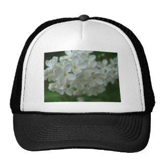 Lilas blanc casquette de camionneur