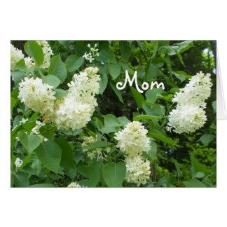 Lilas de blanc de maman carte de vœux