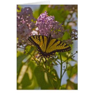 Lilas et papillon carte de vœux
