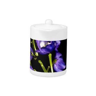 Lilas floraisons foncés