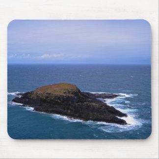 L'île Tapis De Souris