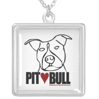 Lilly - amour de pitbull collier