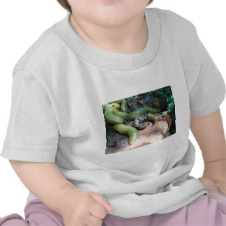 L'impair T-shirts