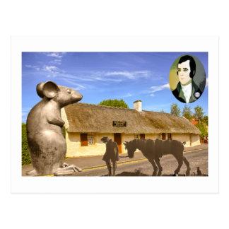 L'indépendance écossaise brûle à une souris carte postale