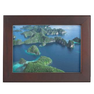 L'Indonésie, Papouasie occidentale. Antenne de Boîte À Souvenirs