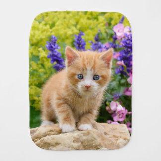 Linge De Bébé Chaton mignon de chat de gingembre en portrait