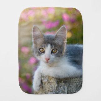 Linge De Bébé Le jeune rose bicolore mignon de chaton de chat