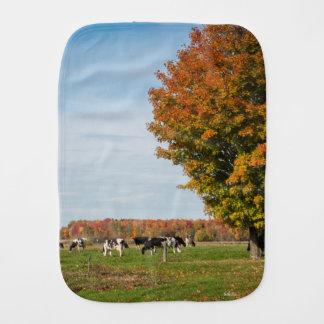 Linge De Bébé photo de vaches avec arbre