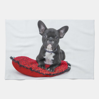 Linge De Cuisine Bouledogue noir et blanc Terrier sur le coussin